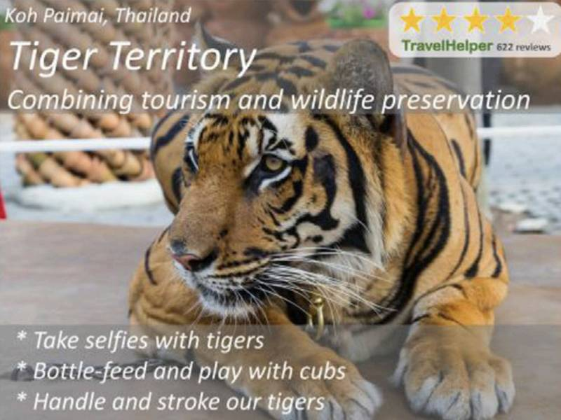 News -The Effect of Priming, Nationality and Greenwashing on Preferences for Wildlife Tourist Attractions