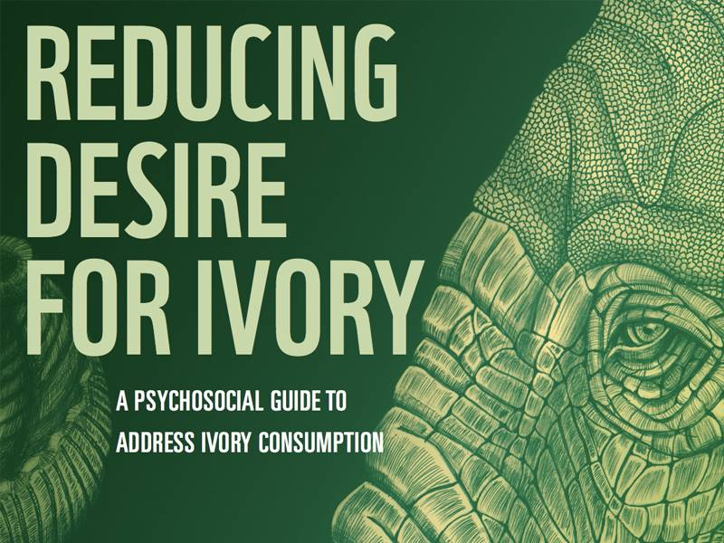 News -Reducing Desire for Ivory: A psychosocial approach to reducing ivory consumption