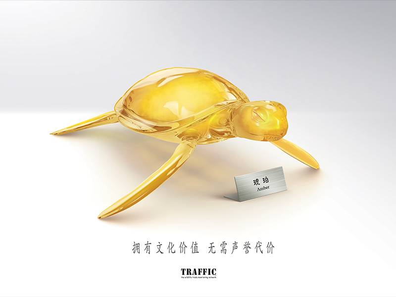 Infographic - TRAFFIC: Key Visual for Green Collection Campaign: Turtle 绿色收藏主题宣传活动宣传品展示:海龟